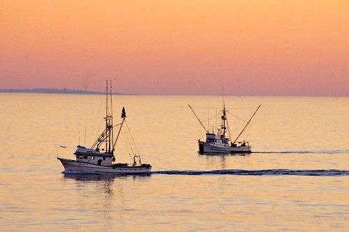 Fishing Boats at Sunset | by Dave Hamster