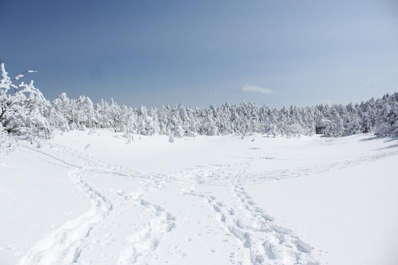 北横岳の七ツ池