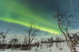 Auroras Boreales en Noruega-51 | by luisete