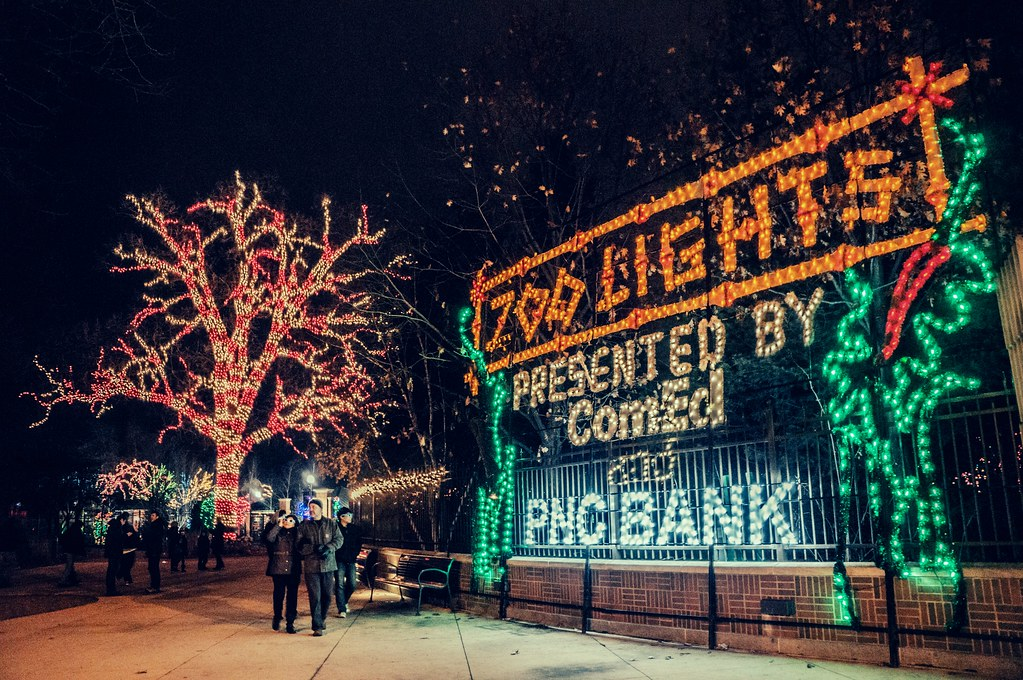 Zoo Lights Presented By Comed And Pnc Bank Joshua Mellin