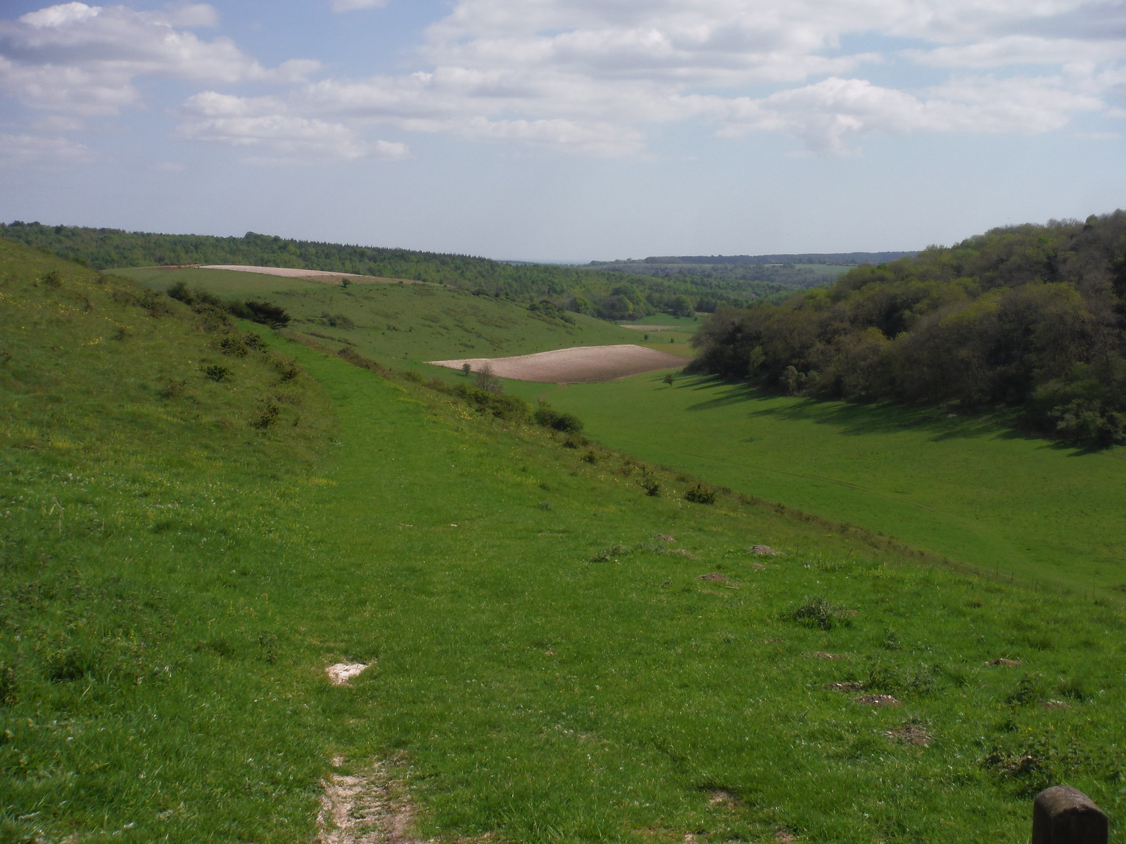 Millpond Bottom, from saddle between Pen and Beacon Hills SWC Walk Rowlands Castle Circular - Extension