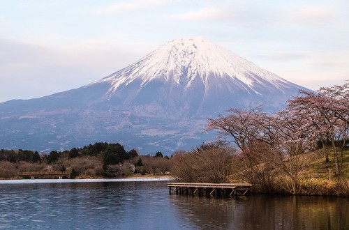 pink mountain water japan clouds cherry landscape volcano fuji blossom cherryblossom sakura