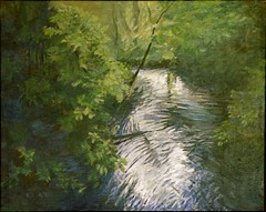 stream in a wood: douglas rutzen