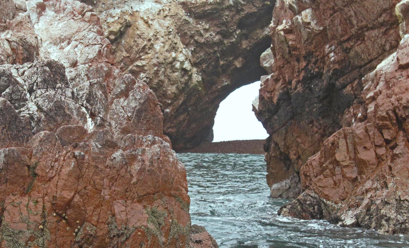 Islas Ballestas 61