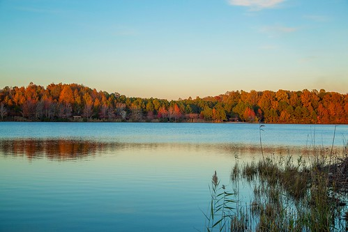 park autumn trees red orange lake green fall water yellow virginia oak grove chesapeake oakgrovelake oakgrovelakepark