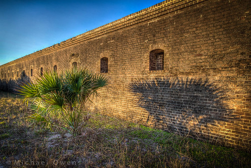 brick wall sunrise florida fort palm civilwar palmetto fernandina clinch sabal