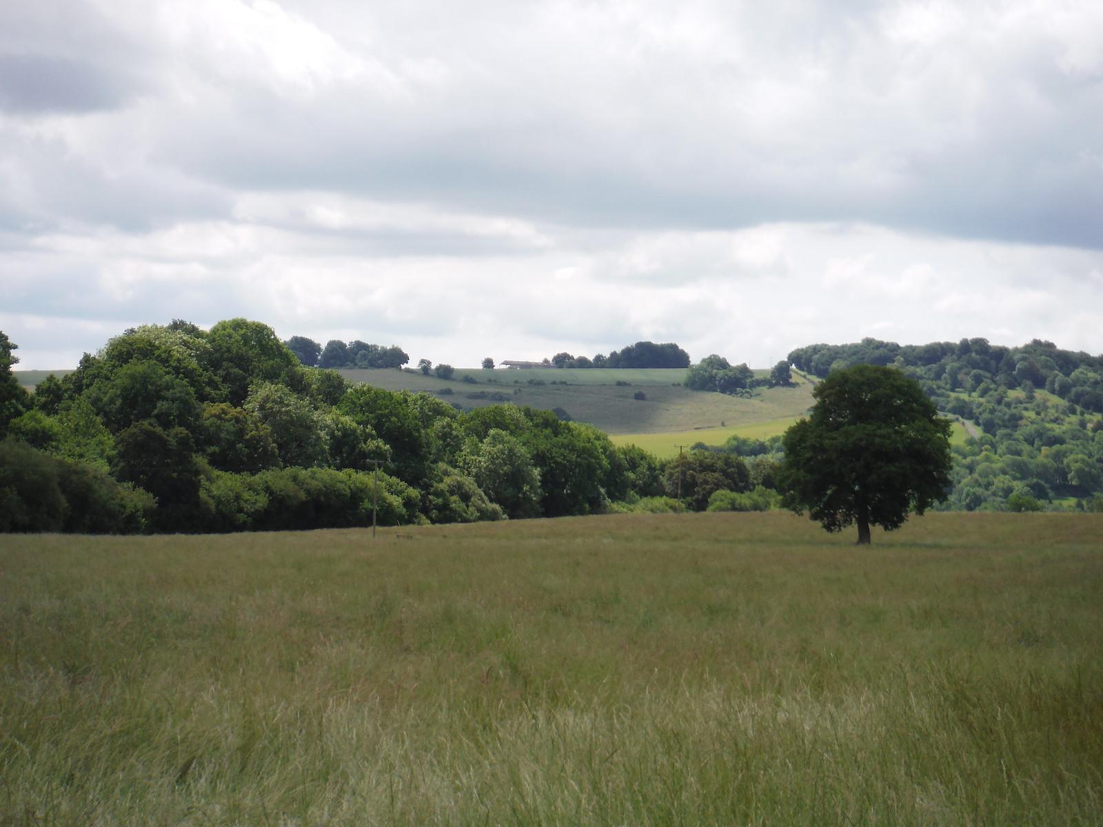 Dun Valley and Dean Hill ridge, from near Pug's Hole Farm SWC Walk 265 - Dean to Mottisfont & Dunbridge