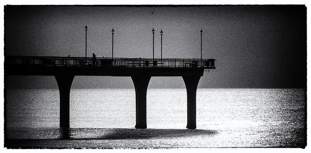 20160628_0564_7D2-190 Film Noir at the Pier (180/366)
