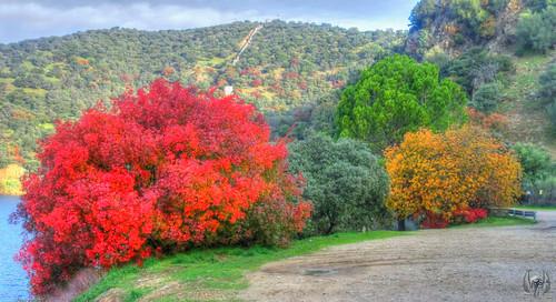 2014_11_22_Aldea_del_Fresno_018   by M.a.r.t.e.r.
