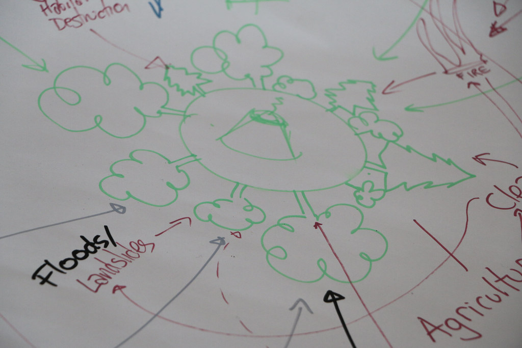 Laurissilva Future Workshop