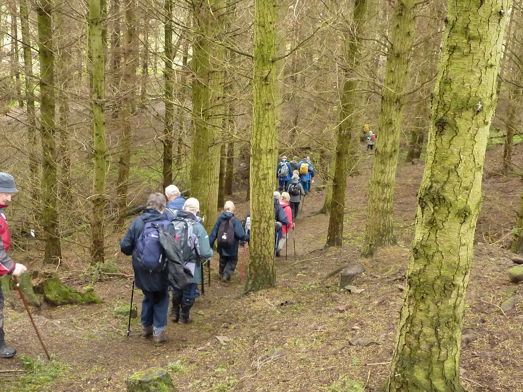 Hexham Pathfinders test Dukesfield walk 40