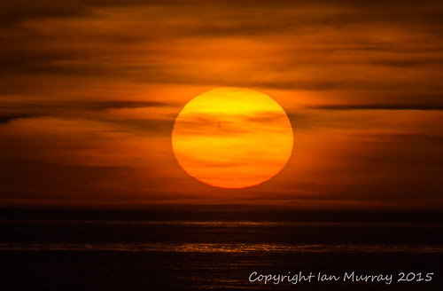 sunset florida manasota