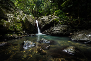 El Yunque National Forest, Puerto Rico | by Matt Shiffler Photography