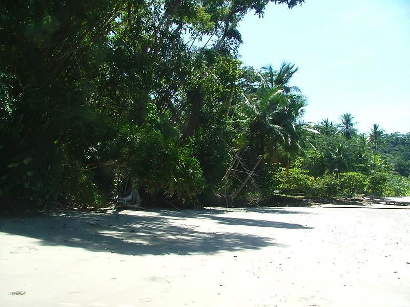 Costa Rica 2006 - 024