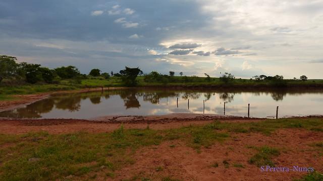 Water pond (Açude) in the road to XV de Novembro Farm in Lavinia-SP, Brazil