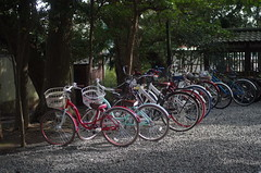 bicycles at Kōtoku-in