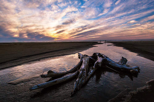 sunset beach stream driftwood oceanshores