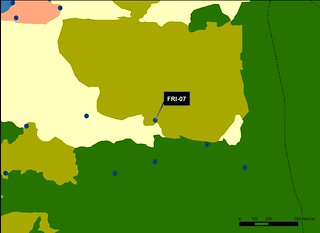 FRI_07_M.V.LOZANO_ALRERAL_MAP.VEG