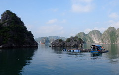 Life in Halong