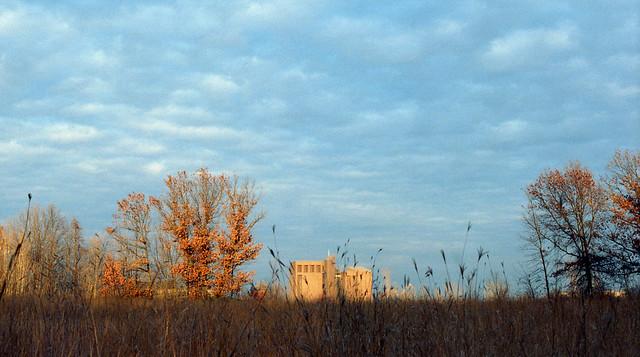 fall prairie at UWGB (in explore)