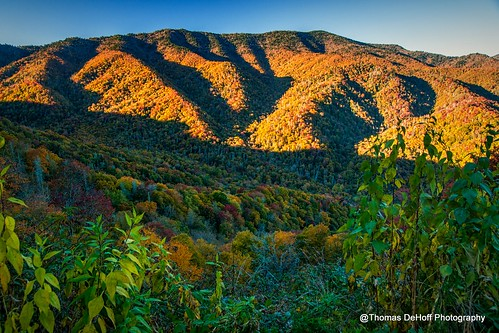 autumn mountains fall colors mt sony great le smoky conte a700