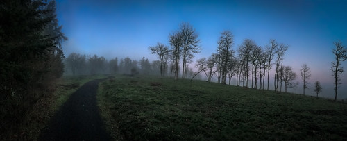 iphone foggy winter iphone6s walking moody panorama christmaseve pano greengrass pinkandblue coopermountainnaturepark trail fog path iphoneography december walk beaverton oregon unitedstates us overlooktrail outdoors