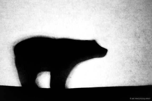 Macro Mondays: Just White Paper. Silhouette
