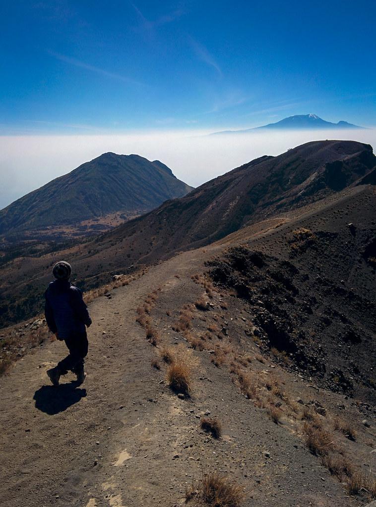 Abstieg vom Gipfel immer mit dem Kili im Blick - 3. Tag Mount Meru Tour, 2016