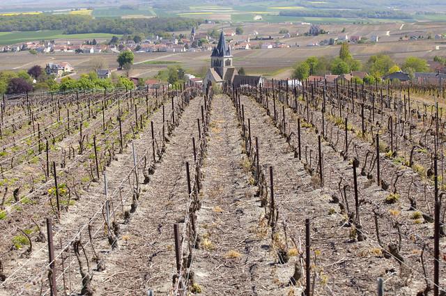 Vue de Chapelle Saint-Lié, Champagne-Ardenne, France