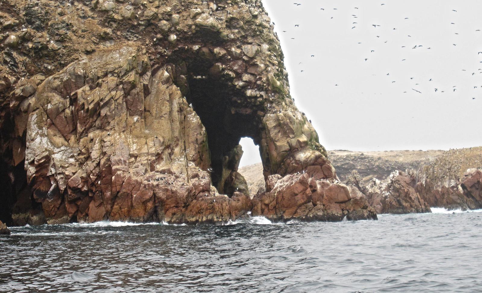 Islas Ballestas 111