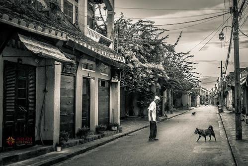 street people blackandwhite dog sunrise asian asia vietnam hoian oldhouse