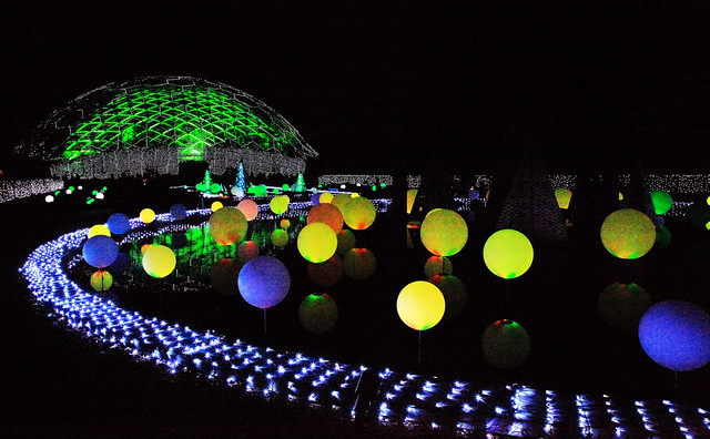 Garden Glow #5