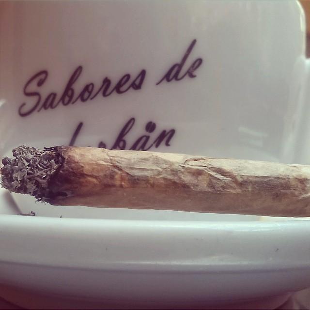 Café Y Porro En La Terraza Feliz Domingo Weed Yerba