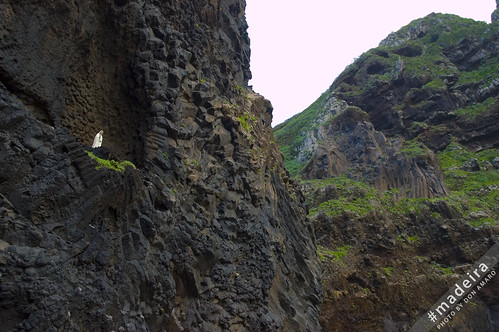 Basalt Rock with a statue of the Holy Maria | by Madeira Island