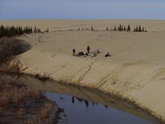 Taking a break on the dune