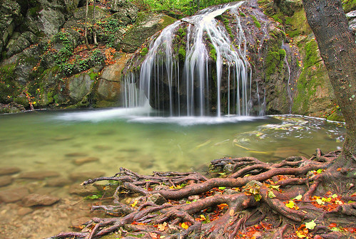 trees summer nature water forest landscape waterfall russia roots ukraine crimea beech