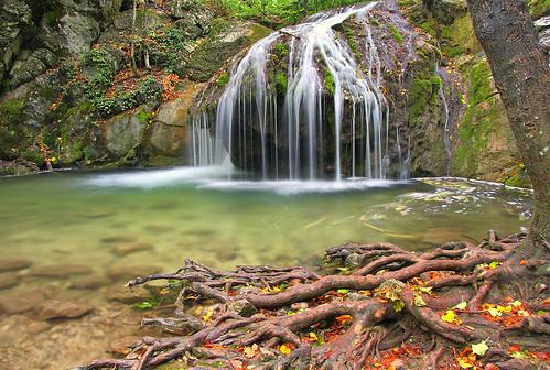 trees summer nature water forest landscape waterfall russia roots ukraine crimea beech