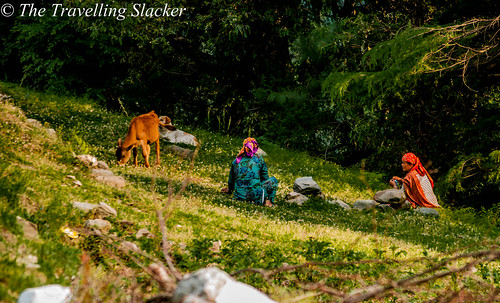 Barot (3) | by travelling slacker