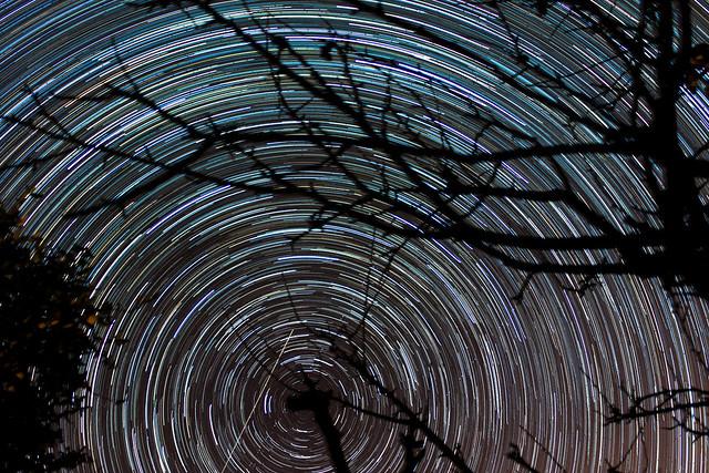 90 minute star trails 14/11/14