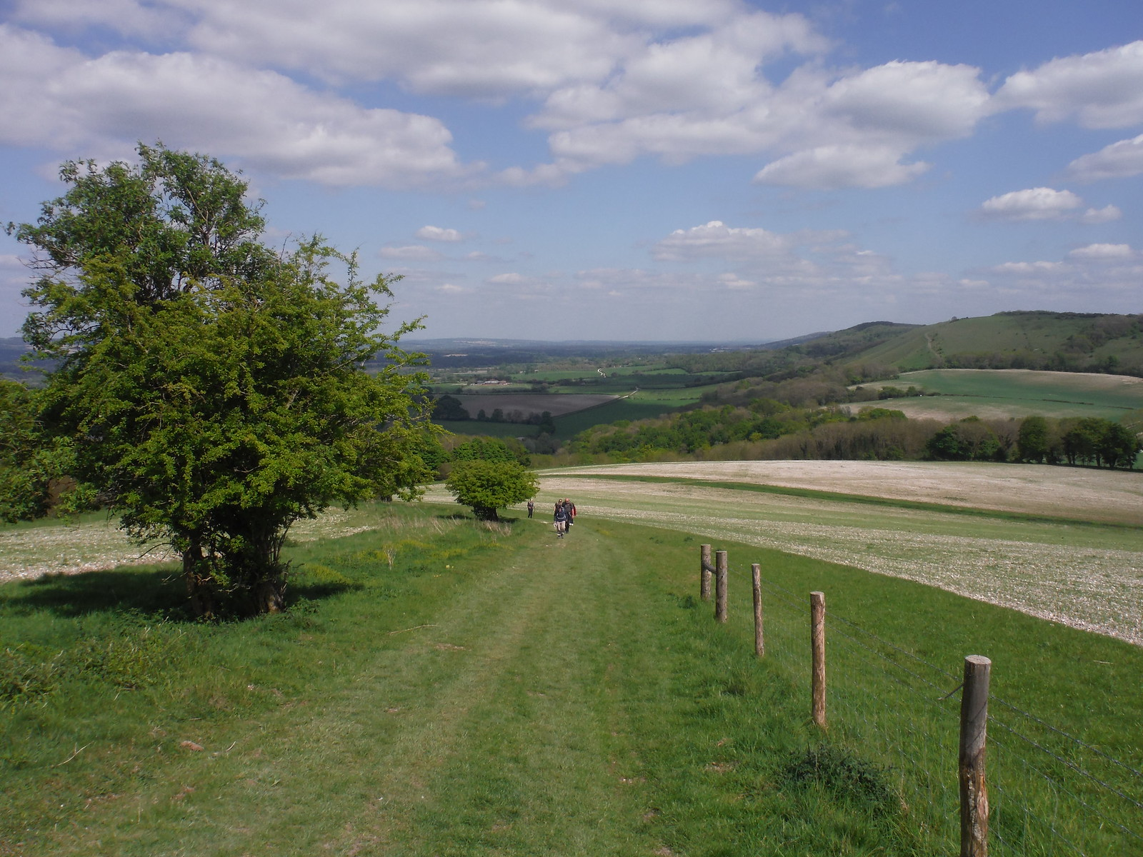 Easterly Views along Buriton Hanger, from approach up Pen Hill SWC Walk Rowlands Castle Circular - Extension
