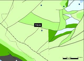 TYM_06_M.V.LOZANO_SAN PEDRO_MAP.GEOL