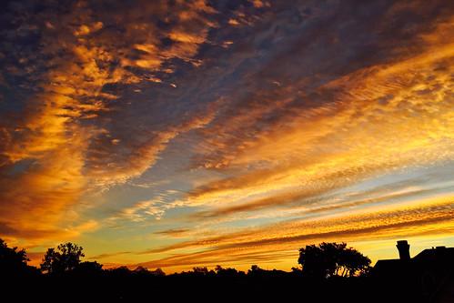 new sunrise garden orleans louisiana distrtict todaysunrise1111814neworleans
