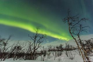 Auroras Boreales en Noruega-50 | by luisete