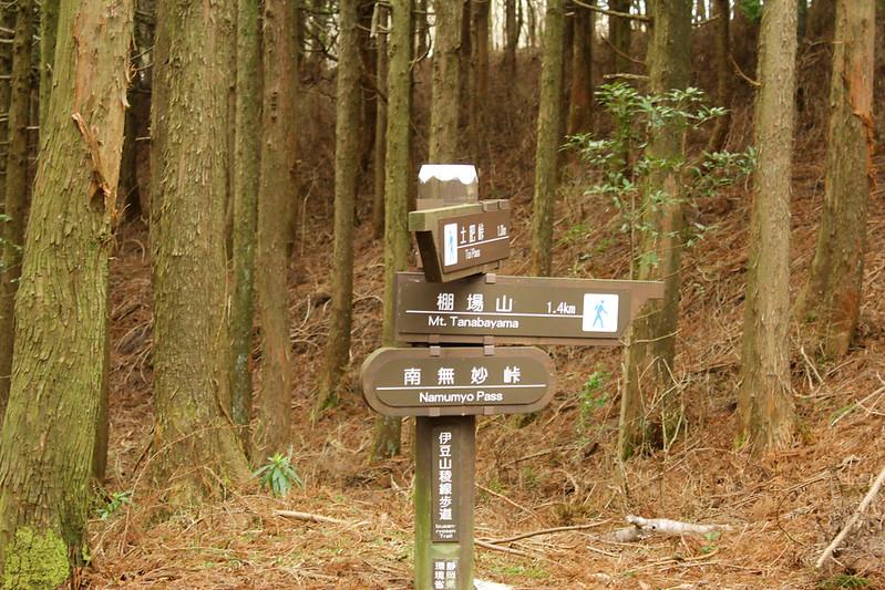 2014-03-31_00398_伊豆稜線トレイル.jpg