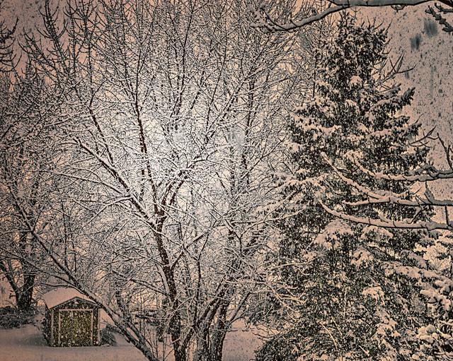 Illinois winter.