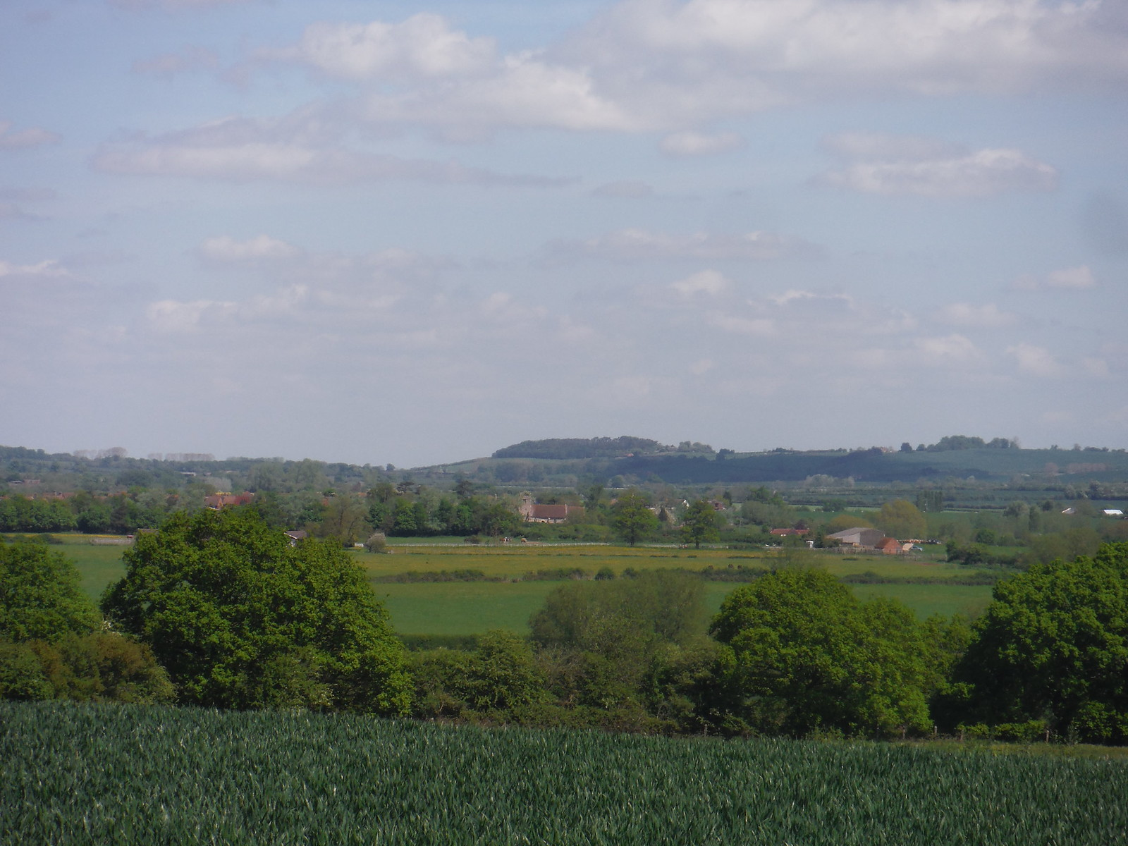 View across the Thame Valley, from near Albury SWC Walk 190 - Thame Circular