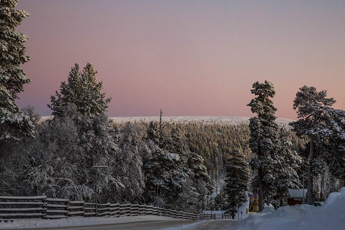 winter sunset finland lapland lappi polarnight kaamos