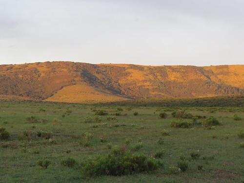southafrica pumbaprivategamereserve pumbawaterlodge