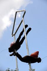 jindzen, dong huh Paragliding