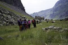 El grupo observando las marmotas